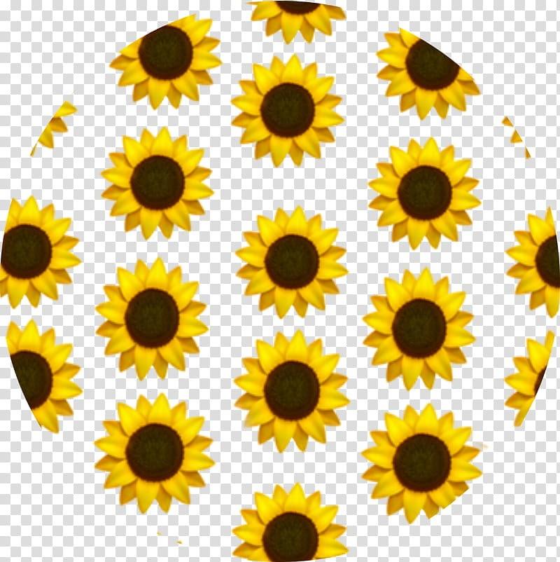 View Logo Tiktok Icon Aesthetic Yellow Pictures