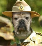 That's Sergeant Dog Ranger to you!