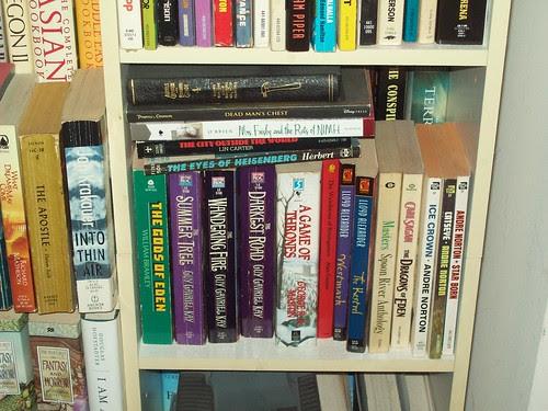 Bookshelves 33