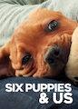 6 Puppies & Us - Season 1