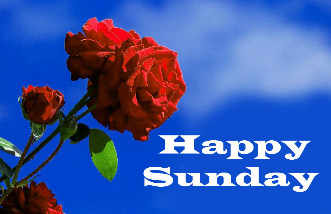 Sunday Good Morning Wishes Images Download