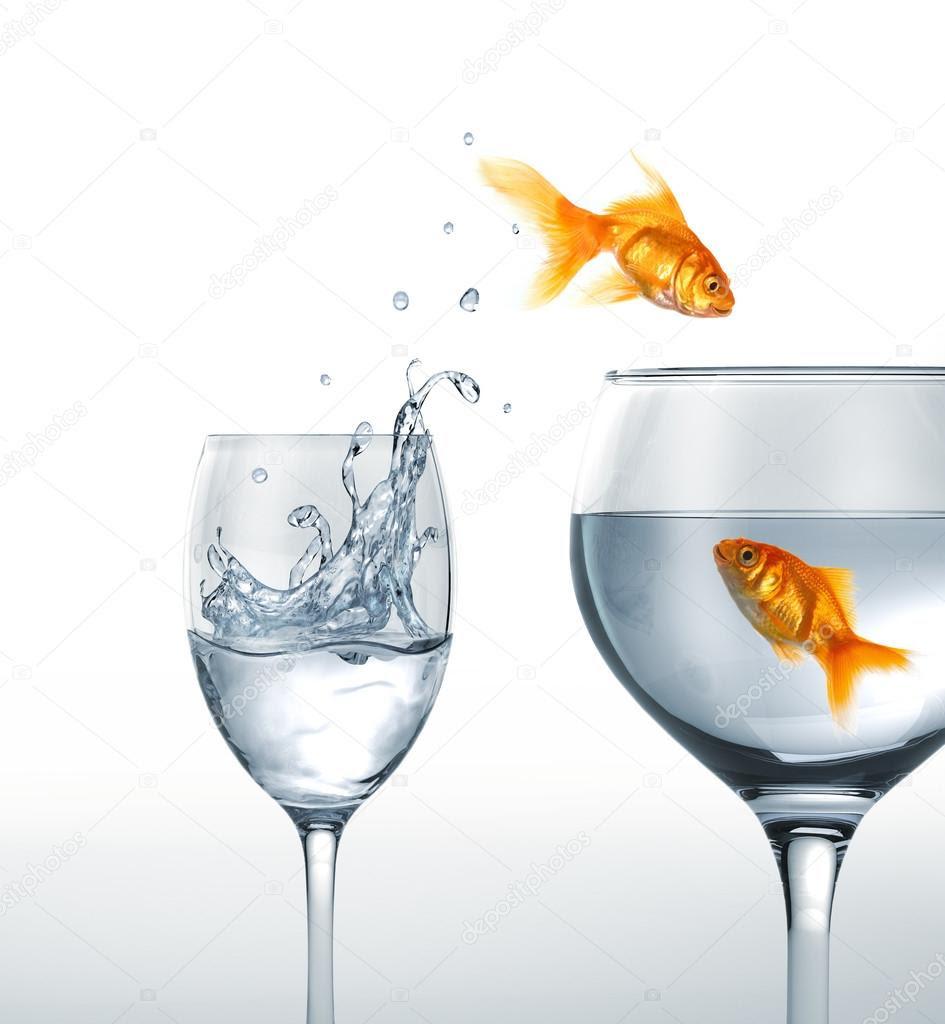Resultado de imagem para um copo de água