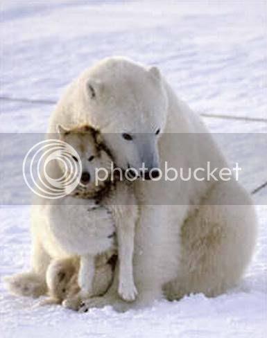 hug photo: Hug Hug.jpg
