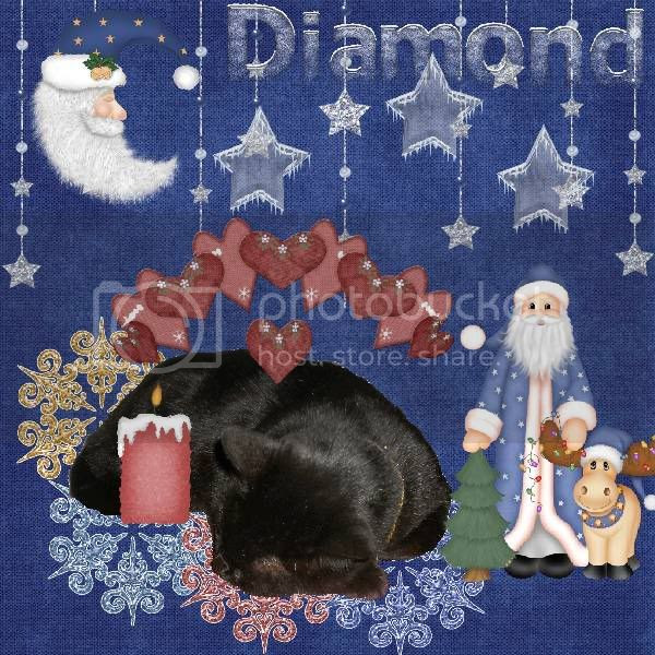 Domestic Cat,Santa,Winter,House Panther,Black Cat,Miss Diamond,Snow,Happy Holidays,Snowcats Project