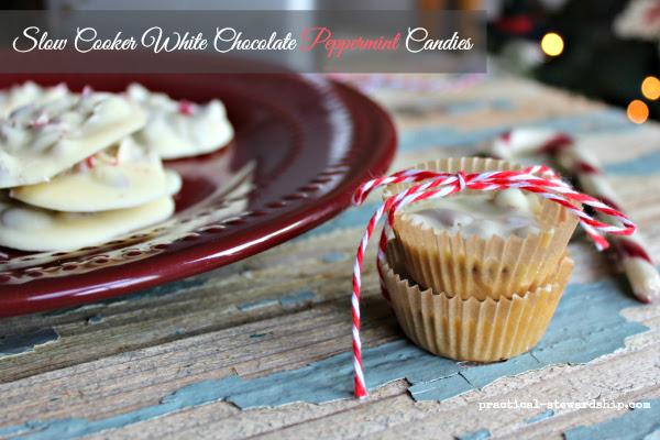 24 Candy Ideas: Slow Cooker White Chocolate Peppermint Candy
