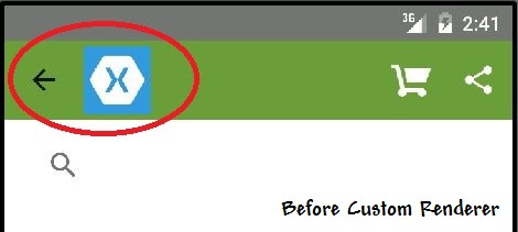 Remove Android Action Bar Icon in Xamarin Forms