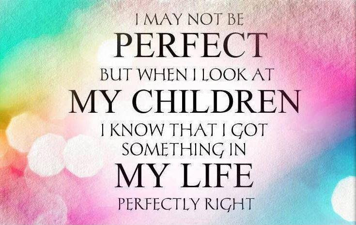 I May Not Be Perfect But When I Look At My Children I Know That