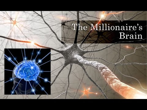 The Millionaire's Brain Review – Is Winter Vee Scam ?