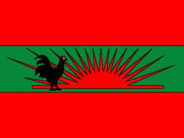 Bandeira Unita.jpg