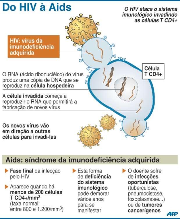 Proteína do leite materno pode proteger bebês do vírus da aids