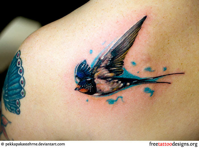 Meaning And Pictures Of Swallow Tattoo Designs