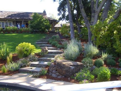 Woodside, CA traditional landscape