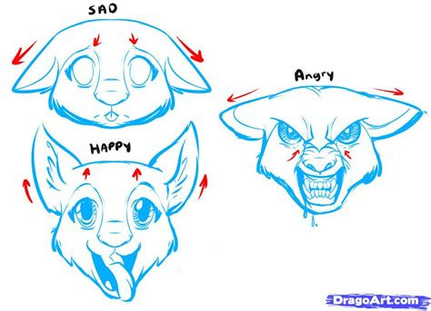 draw  anime dog anime dog step  step anime