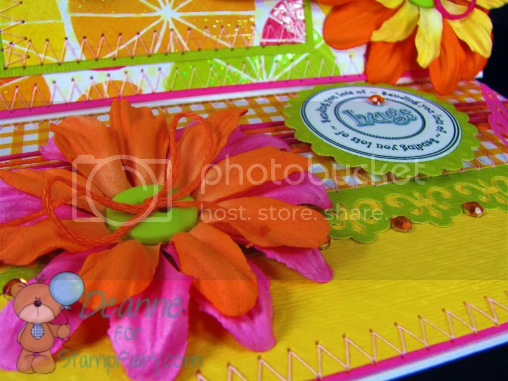 Lilly Citrus