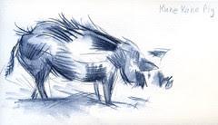 SF Zoo Visit: Pig profile