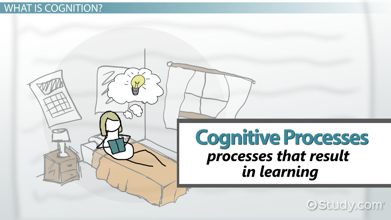 cognitive processes in learning types definition examples_112871