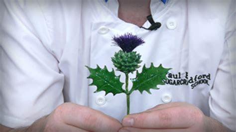 Scottish Thistle   Paul Bradford Sugarcraft School