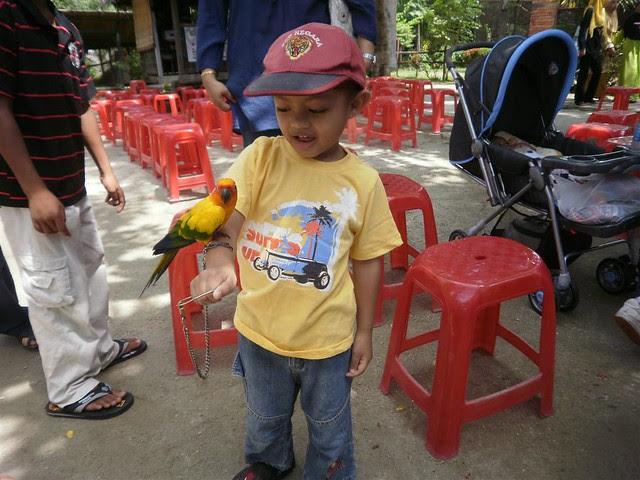 Penang Bird Park 010 (Large)