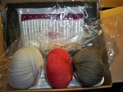 KnitPicks Zephyr Interchangeable Circular Needle Set and Palette Yarn