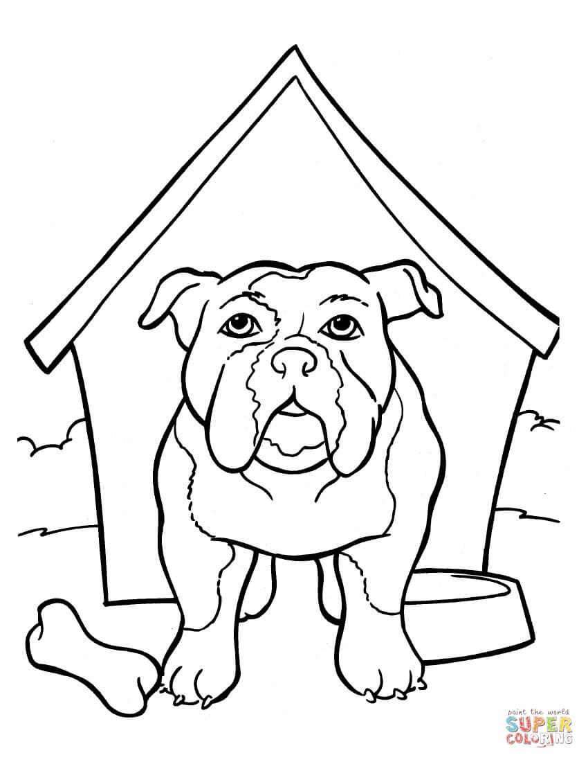 Alleen Kleurplaat Husky Hond Krijg Duizenden Kleurenfoto
