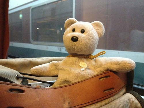 Little Pink Bear on the train