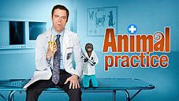 Animal Practice promo.jpg