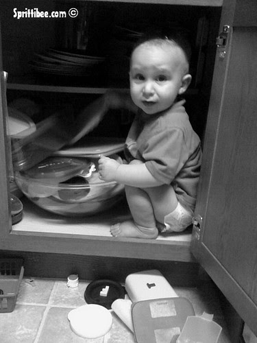 caught-in-cabinet