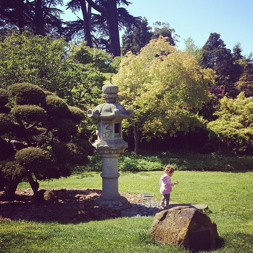 Day 31: Outside the Japanese Tea Gardens in Golden Gate Park. #photoadaymay #somethingbeautiful