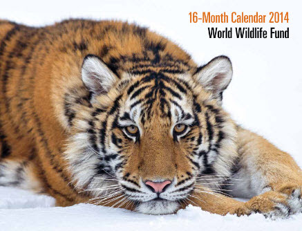 world-wildlife-calendar