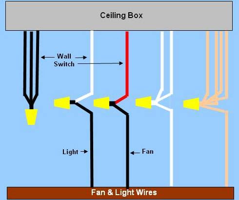 Wiring collection ceiling light wire diagram ceiling wiring diagram on wiring diagram for ceiling fan light power enters at ceiling box mozeypictures Choice Image