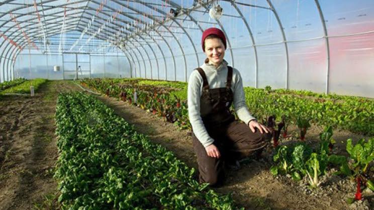 «Μικροί» αγρότες με μεγάλα προβλήματα