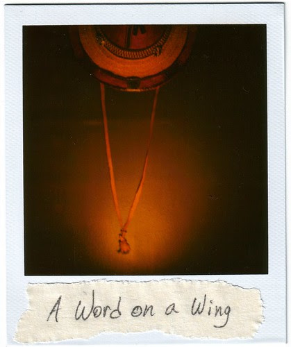 a word on a wing