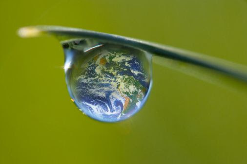 http://a10.idata.over-blog.com/630x470-000000/1/19/33/73/Images-al--atoires/environnement.jpg