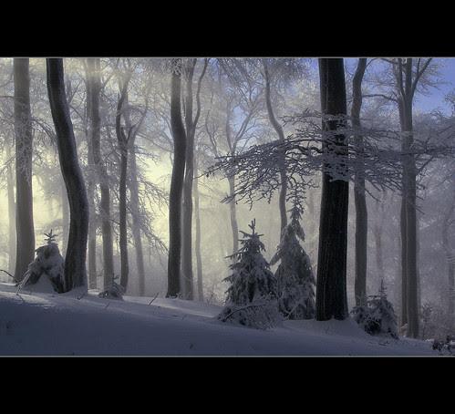 Winter im Sauerland por motivsucher