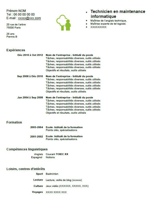 resume format  pr u00e9sentation cv informaticien