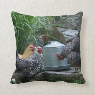 Chickens At The Water Cooler Pillow