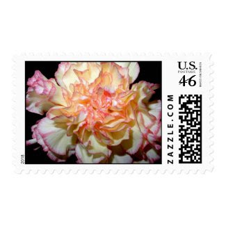 Sweet Carnation Postage