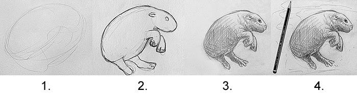 Ein Bild Schritt-für-Schritt zeichnen