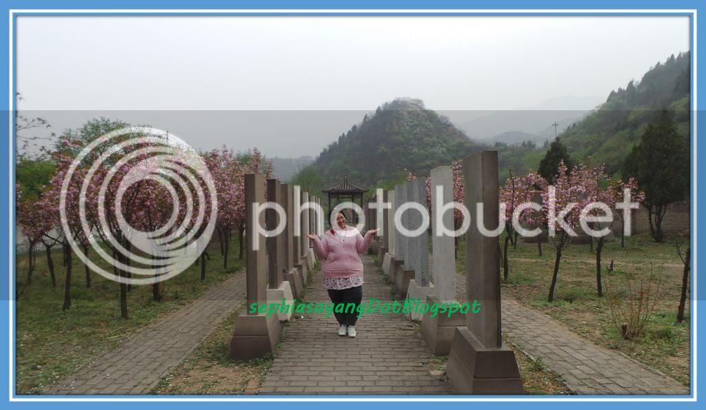 photo Picture36_zps0e961f5c.jpg