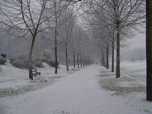 Neve no Campus de Azurém - Guimarães