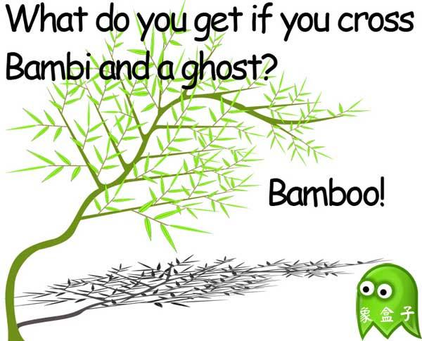 bamboo 竹子 Halloween 萬聖節