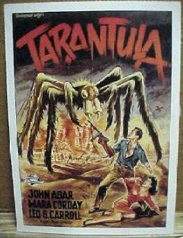 tarantula_gerfilmcard