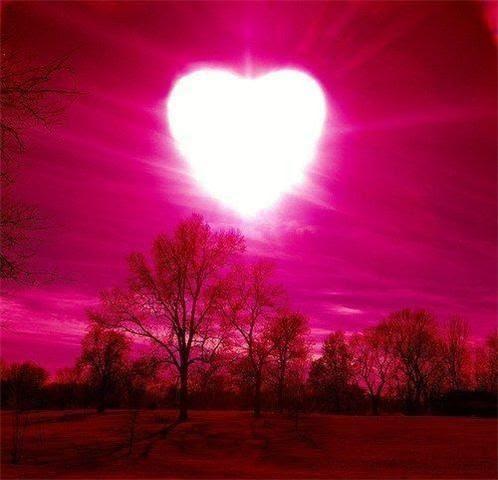 L'Amour, la Paix et l'Harmonie