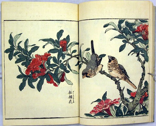 Katyozu birds and flowers album 1805 a