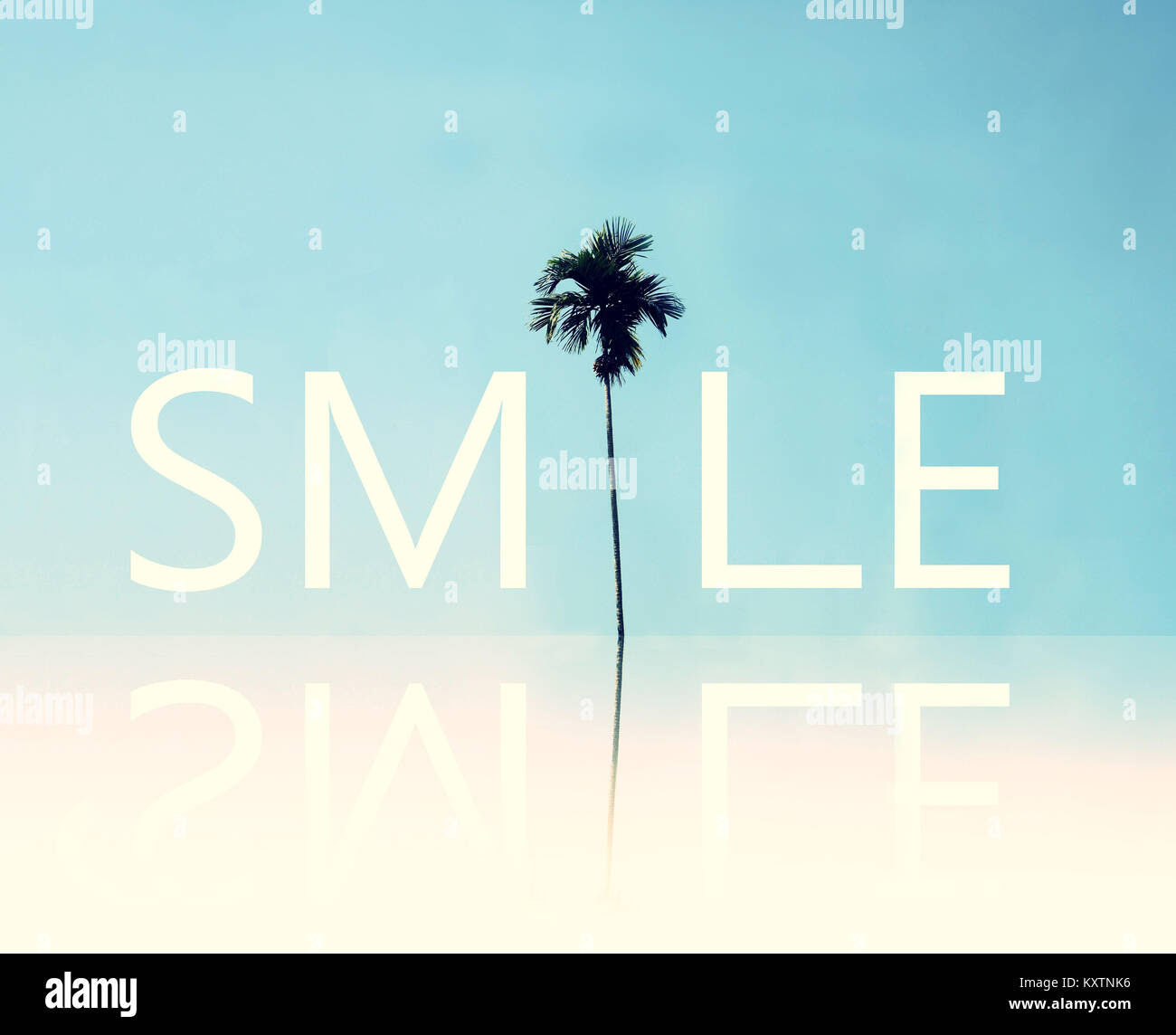 The Reflection Of Positive Inspirational Quote Smile With Palm Tree