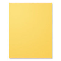 Daffodil Delight A4 Card Stock