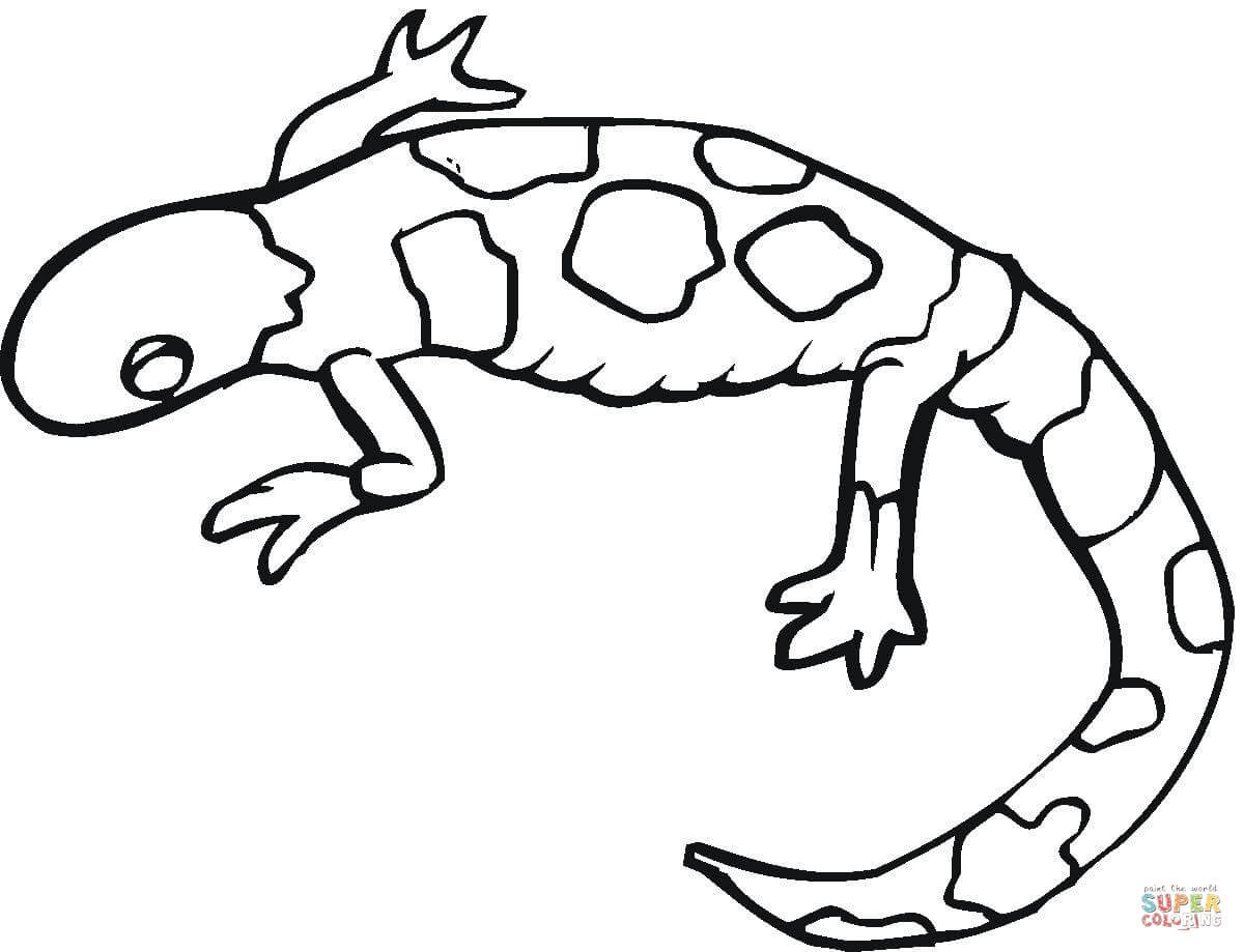 mewar10 kleurplaten gecko