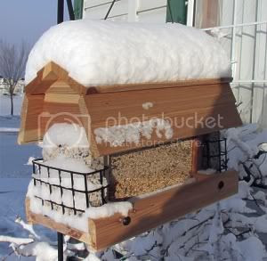 Our new bird feeder
