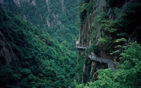 Mountains landscapes trees forest china asia wallpaper