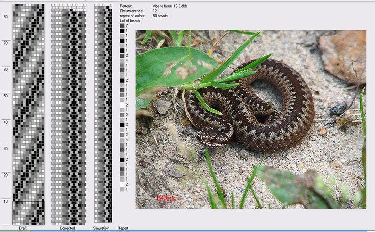 Анастасия Макеева — «vipera berus (12) v.2.png» на Яндекс.Фотках
